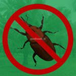 Control of Pests and Diseases